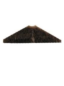 Triangle Mustache