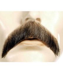 D Walrus Mustache