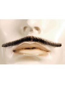 D Errol Flynn Mustache