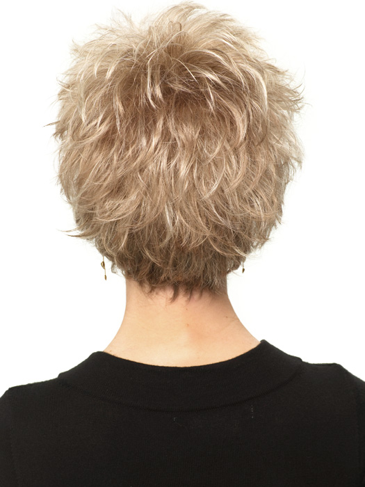 Perk Petite by Gabor Wigs : Back View | Color G19+